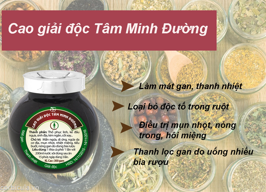 thao-duoc-tmd